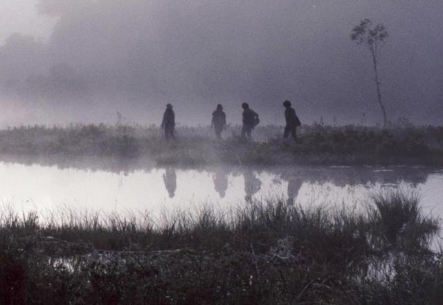 3-霧の朝ー.jpg